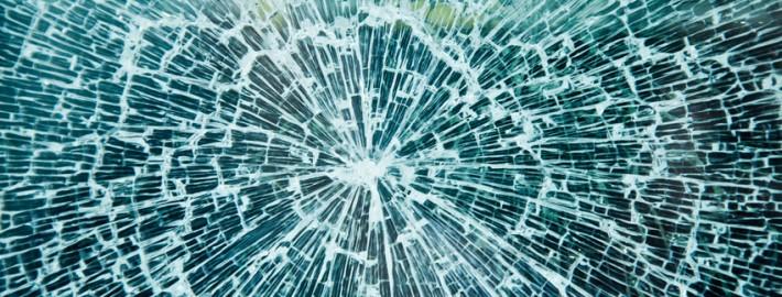Glas, eine Gefahr für Vögel
